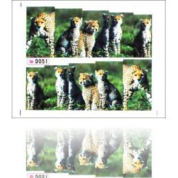 NR. D051 Nálepky na nechty Jungle Jungle nálepky