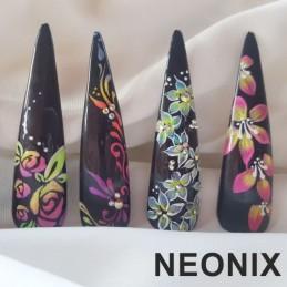 Nail art zdobenie NEONIX Školenia na nechty